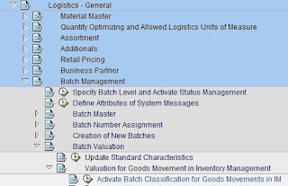 SAP MM Expert: Batch Management
