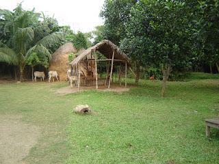 Bipas village