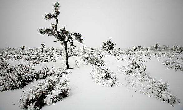 The Guzzler Unusual Snowstorm Closes Three Major Southern