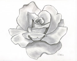 pencil rose sketches drawing draw things drawings roses easy flowers sketch shaded flower cool pretty nice pencils designs trace rosa