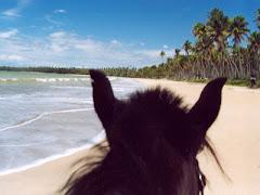 Quero estar aqui...
