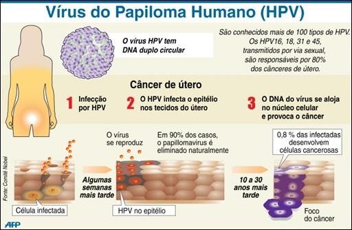 Hpv Virus In Women Over 40 | myideasbedroom.com