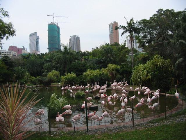 Kowloon-Park, Hongkong