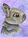 Easter Rabbit Invitation