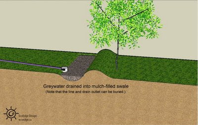 Permaculture Reflections Greywater Guidelines