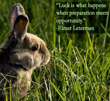 Good Luck Animals
