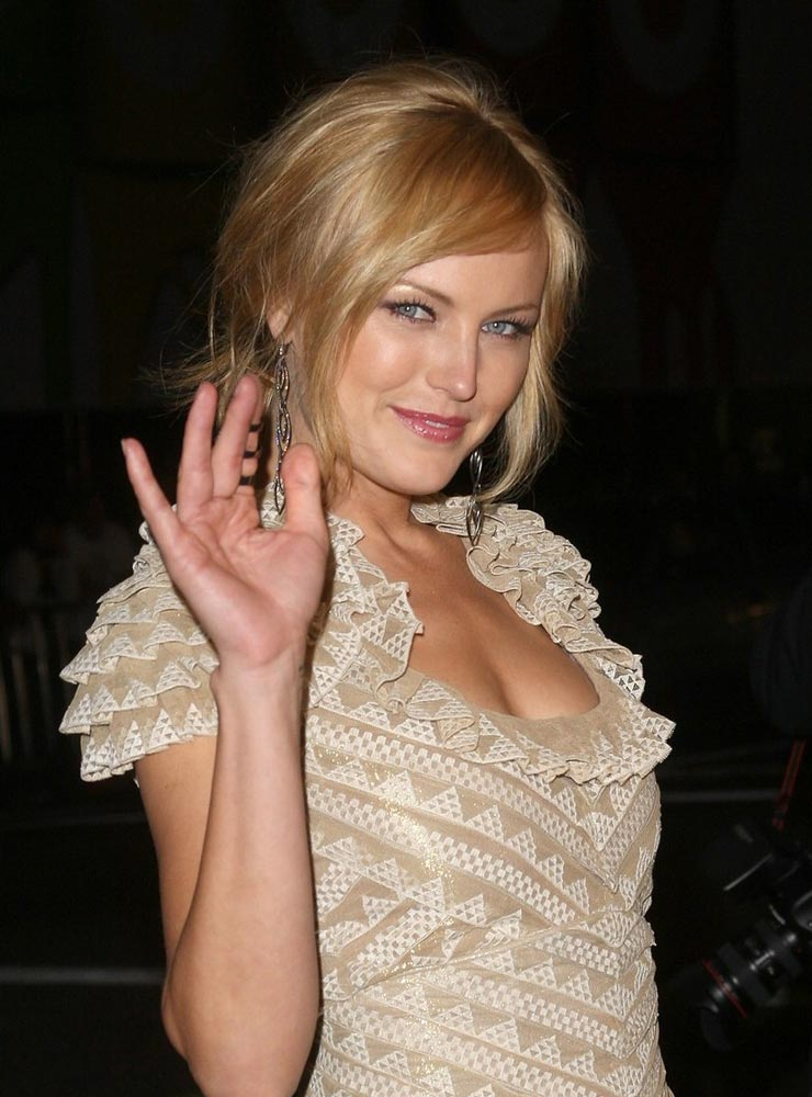 Hollywood Actress Malin Akerman Hot And Sexy Photos -8862