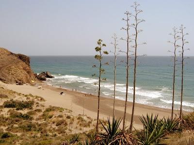 CABO DE GATA, UN PARAISO EN LA TIERRA: ANTONIO AYALA