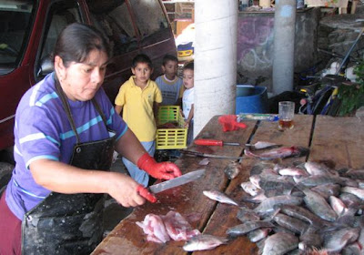 Woman Cleaning Fish Before Drying. Editorial Photo - Image