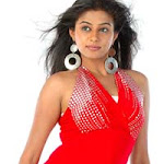 Priyamani Joins The Bikini Parade