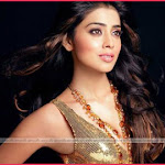 Shriya In Deepa Mehta's Film