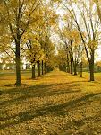 Liberty Lakes Path