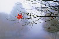 Saúde: no inverno, todo cuidado é pouco!