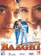 Baaghi (2000) - Hindi Movie