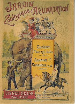Delfi 39 s grains of golden sand bonobos july 2008 for Jardin zoologique d acclimatation