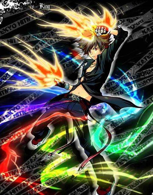 Katekyo Hitman Reborn Character Pairings: Tsuna x Haru ...