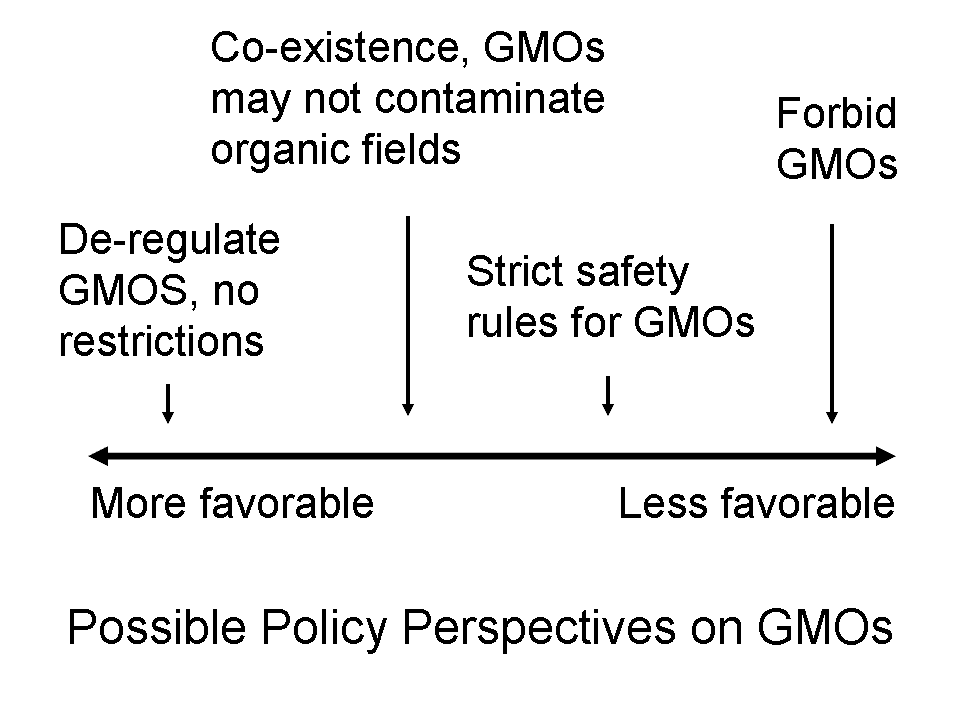 Essay on genetically modified food japan