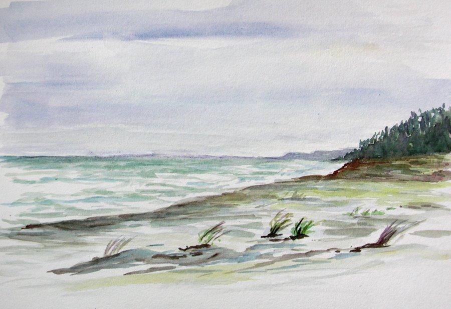[Copalis+Beach,+WA.jpg]