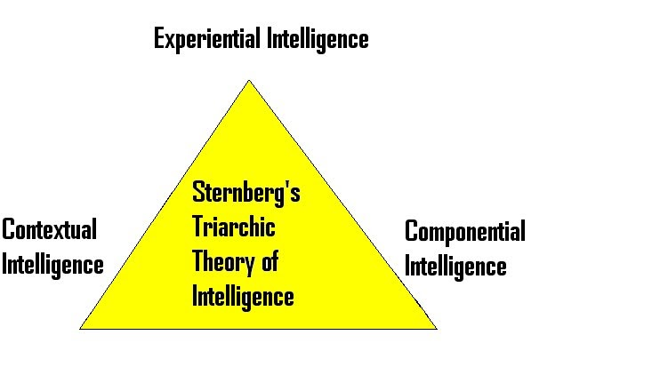 the different theories of intelligence View homework help - different theories of intelligencedocx from psychology psy-108 at southern new hampshire university this week you learned about three different theories of intelligence.