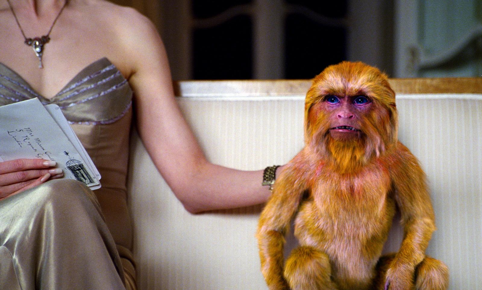 [golden_monkey.jpg]