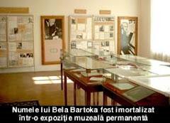 Muzeul Bela Bartok din Sannicolau Mare