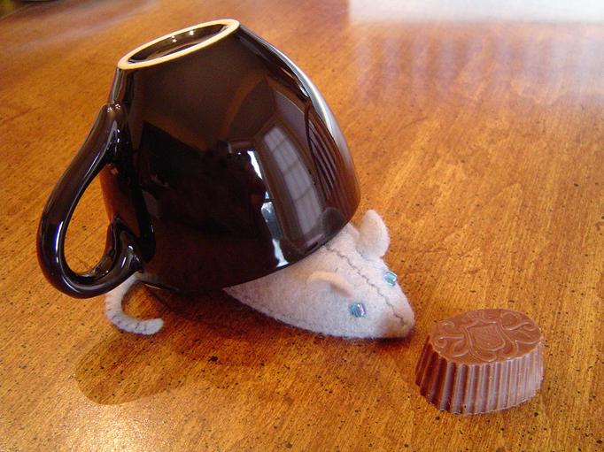 [teacupmouse]