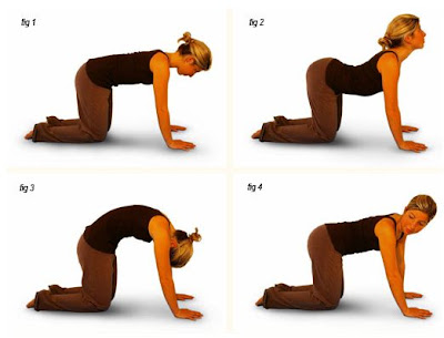 body for blondes yoga for flat stomach  3 simple poses