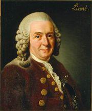 Carl von Linné (Carlos Linneo)