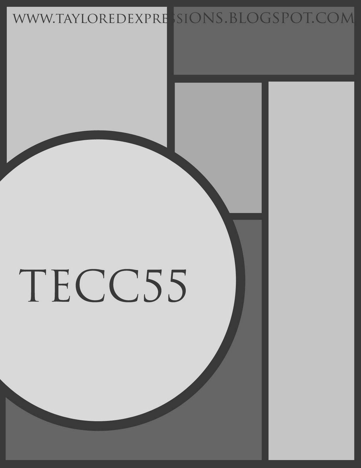 [TECC55(sketch).jpg]