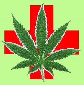 [CrossLeaf2.green.jpg]