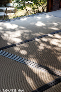 Tatami mat in a sunny day, in Kyoto, Japan