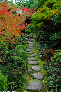 Stepping stones to a tea house, at Koto-in, Daitokuji Temple, in Kyoto