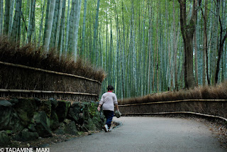 A woman in bamboo forest in Kyoto