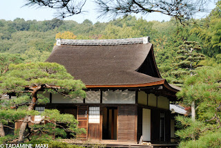 A wooden house surrounded by pine trees, at Ginkakuji Temple, in Kyoto