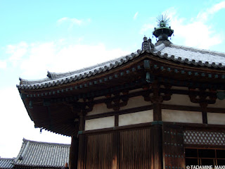 Some layers of tile roofs, at Horyuji Temple, in Nara