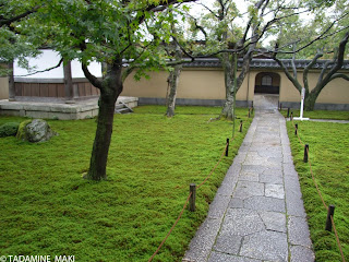 A path in the carpet of mosses, Kobai-in, Daitokuji Temple, in Kyoto, Japan