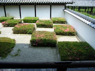 Tofukuji Temple, Kyoto sightseeing