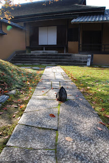 Sekimori-ishi, a small stone for making guests to keep away, at Katsura Imperial Villa, in Kyoto