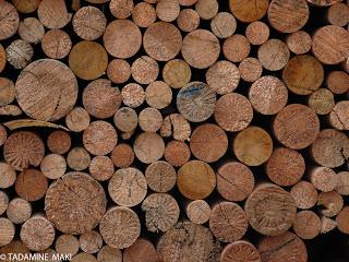 wood, Kyoto