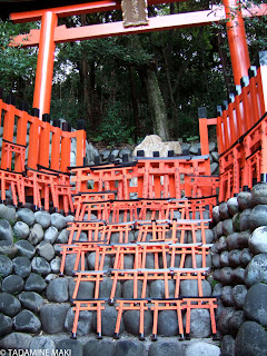 Small sacred gates, torii, for being dedicated to a shrine, Fushimi Inari Shrine, Kyoto