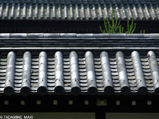 tile roofs, Tofukuji Temple