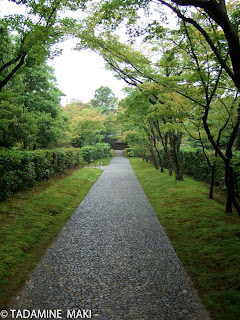 A paved path with tiny pebbles surrounded with fresh green, Katsura Imperial Villa, Kyoto