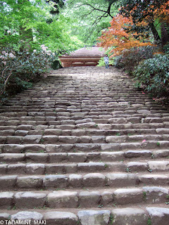 Natural stairs, Murouji Temple, Nara, Kyoto