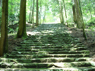 many steps surrounded by the fresh green, Kozanji Temple, Kyoto