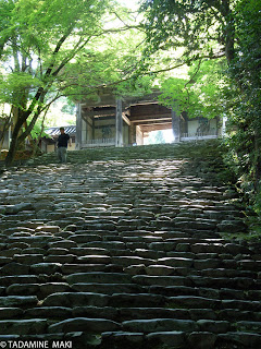 A flight of stairs 2, Jingoji Temple Kyoto