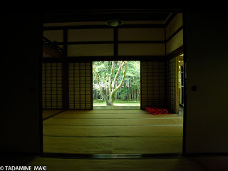 a greened room, at Koto-in of Daitokuji Temple, in Kyoto