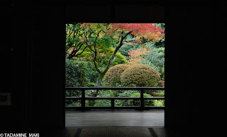 A view from the inside of a building, at Koto-in Daitokuji Temple, in Kyoto