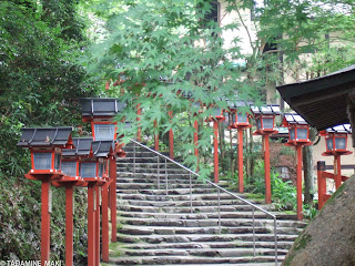 A flight of steps to a shrine with fresh green, at Kifune Shrine, in Kyoto