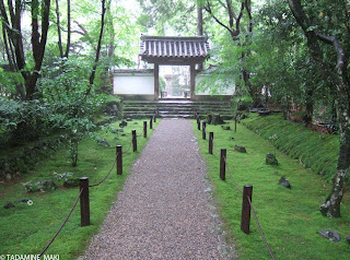 A path along with carpets of mosses at Jizo-in, in Kyoto