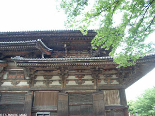 an old building with fresh green, at Toji Temple, in Kyoto